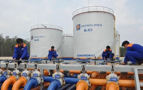 Không đề xuất tăng thuế bảo vệ môi trường xăng dầu ảnh 1
