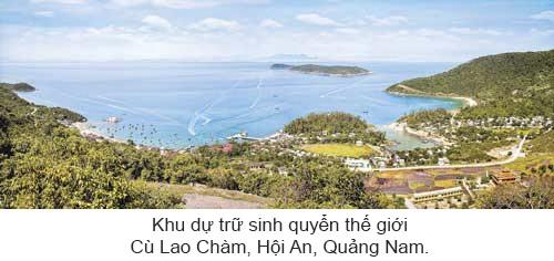 Quyến rũ biển Việt Nam ảnh 3