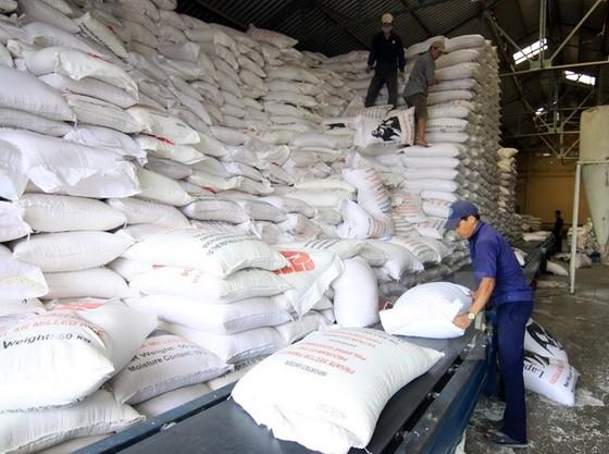 VFA: Không mua tạm trữ gạo vụ Đông Xuân ảnh 1