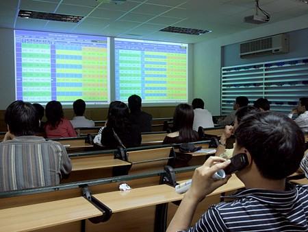 Thuận Thảo bị tạm ngưng giao dịch từ 17-3 ảnh 1
