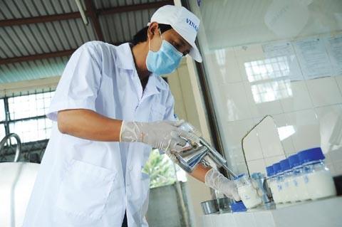5 DN Việt Nam vào danh sách Asia 300 ảnh 1