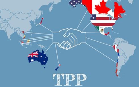 Chuẩn bị trình Quốc hội phê chuẩn Hiệp định TPP ảnh 1