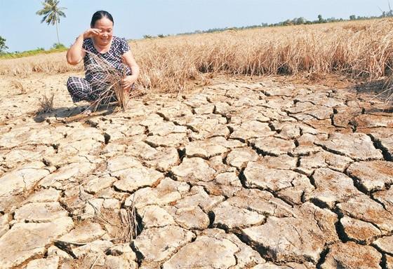 Lào xả nước giúp Việt Nam đối phó hạn hán ảnh 1