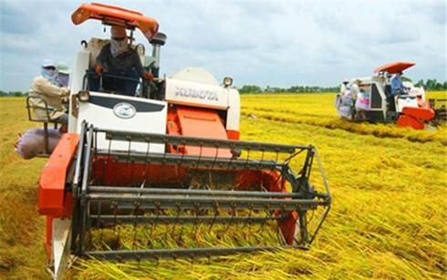 Không chuẩn quốc tế, nông nghiệp thua sân nhà ảnh 1