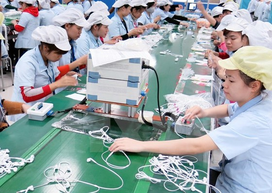 Kinh tế Việt Nam tăng trưởng bởi khối FDI ảnh 1