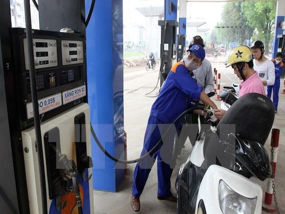 Chưa có kế hoạch tăng thuế môi trường xăng dầu ảnh 1