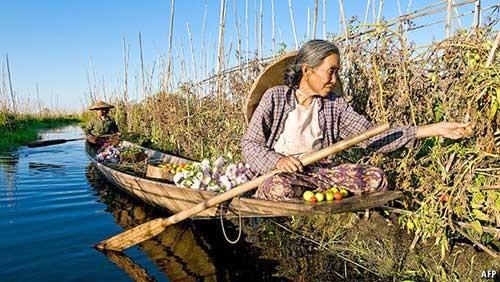 Myanmar chông gai cải tổ kinh tế ảnh 1
