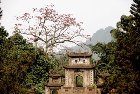 Chùa Hương mùa hoa gạo nở ảnh 4