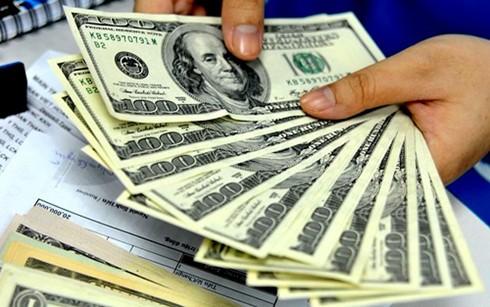 Hơn 14 tỷ USD gửi ra nước ngoài năm qua ảnh 1