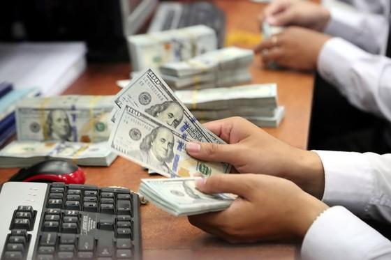 Thiếu vốn thừa USD ảnh 1