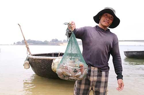 Ngư dân gác chèo, treo lưới vì họa 'cá chết' ảnh 1