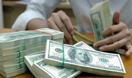 Bảo lãnh huy động vốn quốc tế dài hạn cho đầu tư ảnh 1