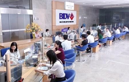 Lợi nhuận BIDV giảm gần 10% so với cùng kỳ ảnh 1