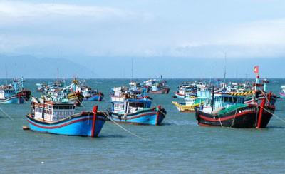 Huy động DN tham gia tiêu thụ hải sản an toàn ảnh 1