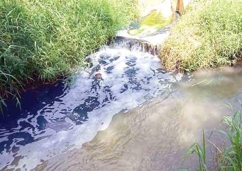 Ngăn ngừa ô nhiễm ngành dệt may ảnh 1