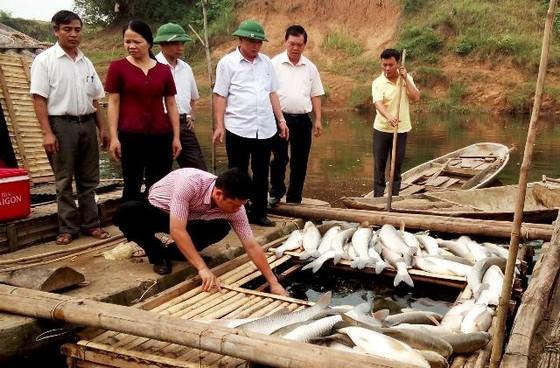 Gây ô nhiễm sông Bưởi, các cơ sở bị phạt 4 tỷ ảnh 1