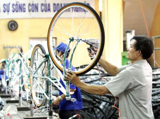 Xe đạp Thống Nhất IPO 3 triệu cổ phần ảnh 1