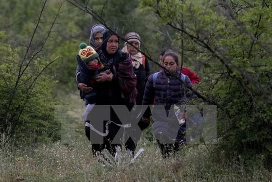 Giới buôn người kiếm 5 tỷ USD từ dân tị nạn ảnh 1