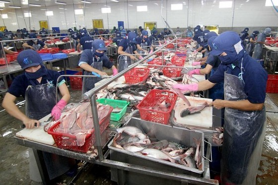 AmCham: TPP thúc đẩy Việt Nam tăng tốc hội nhập ảnh 1