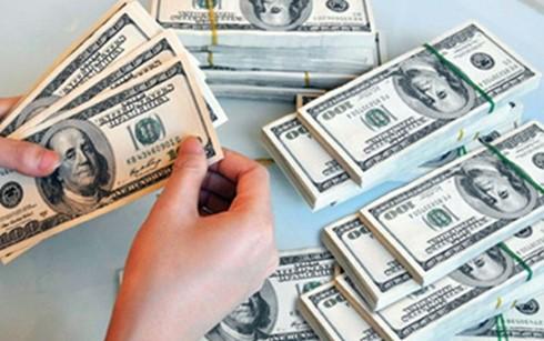 Kiều hối 4 tháng đạt hơn 1,3 tỉ USD ảnh 1