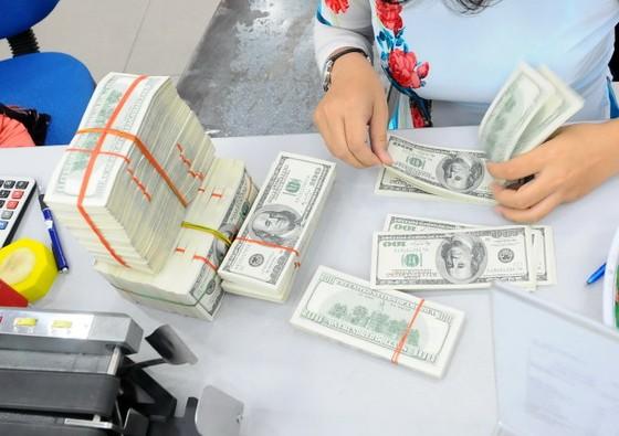 Tỷ giá trung tâm đạt 21.939 đồng/USD ảnh 1