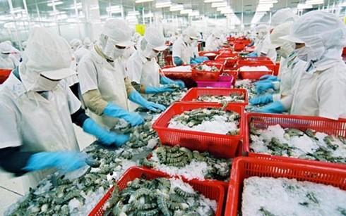 Xuất khẩu thủy sản: Gánh vàng đổ ra biển? ảnh 1