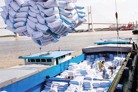 Thương mại Việt Nam – Châu Phi: Nhiều kiểu rủi ro ảnh 1