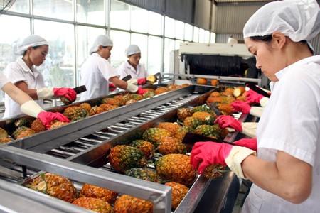 TPP: rau quả tự tin, chăn nuôi chịu sức ép ảnh 1