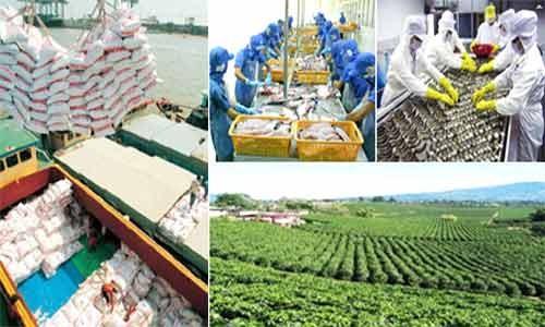 Tổng điều tra Nông thôn, nông nghiệp, thủy sản ảnh 1