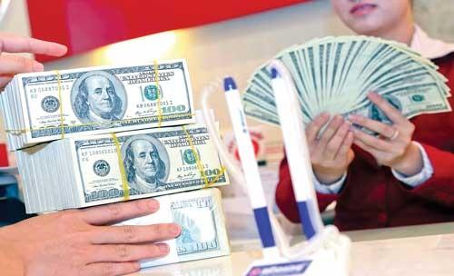 Có nên thiết lập lại chính sách USD? ảnh 1