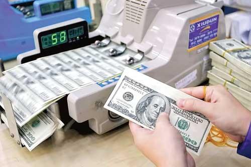 Nên phát hành trái phiếu ngoại tệ trong nước ảnh 1