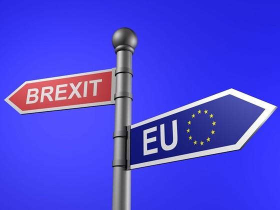 Brexit làm thị trường tiền tệ thiệt hại 35-40 tỷ USD ảnh 1