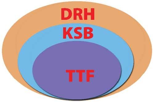 Giải mã bộ 3 TTF-KSB-DRH ảnh 1