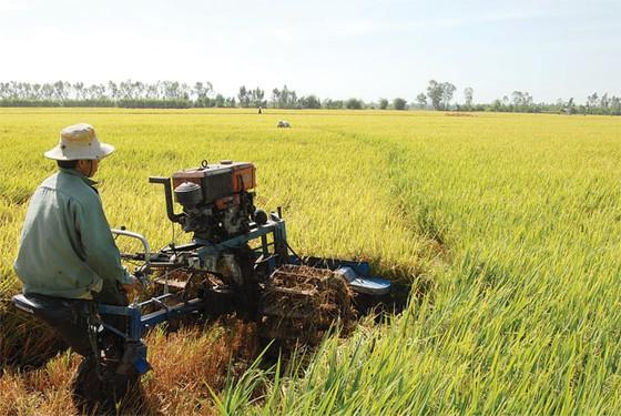 Gỡ vốn cho nông nghiệp ảnh 1