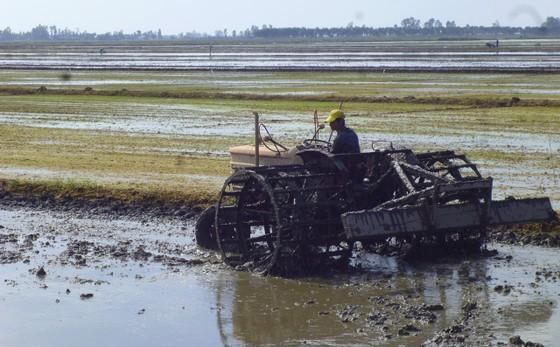 Bàn giải pháp liên kết sản xuất nông sản ảnh 1