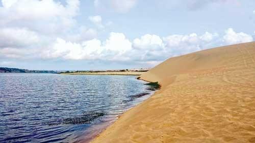 Về miền cát trắng ảnh 3