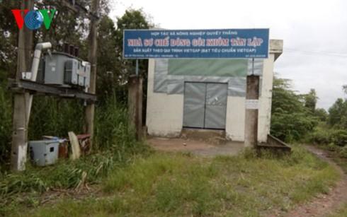 Nhà máy tiền tỷ bỏ hoang gần 8 năm ảnh 1