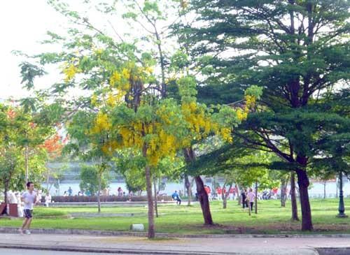 Khắc phục tình trạng xà xẻo đất công viên ảnh 1