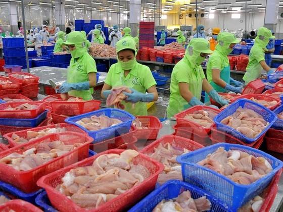 Xuất khẩu nông lâm thuỷ sản đạt 23,3 tỷ USD ảnh 1