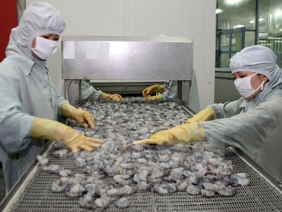 EU cảnh báo 11 lô hàng thuỷ sản dư kim loại nặng ảnh 1