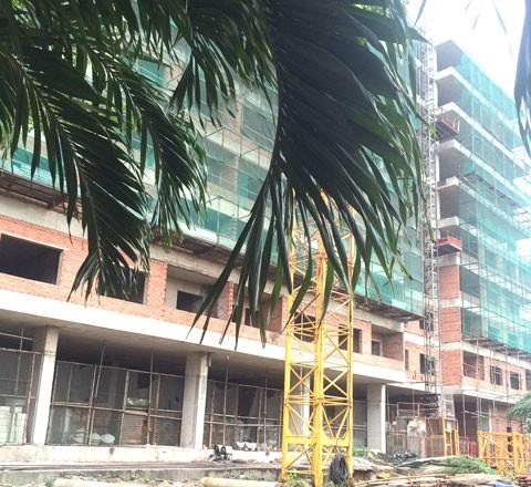 HASG mở bán chung cư Hiệp Thành Buildings ảnh 1
