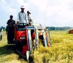 Điểm tựa nông nghiệp ảnh 1