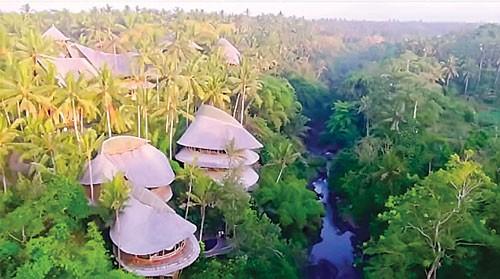 Làng Xanh ở Bali ảnh 1