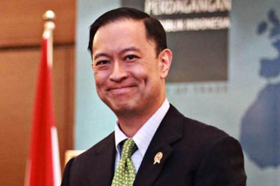 Indonesia có thể tham gia TPP trong vòng 2 năm tới ảnh 1