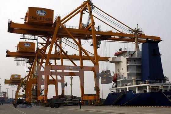 Hàng hóa qua các cảng Hải Phòng đạt 15 triệu tấn ảnh 1