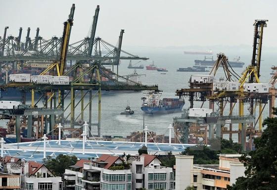Châu Á sẽ dẫn đầu tăng trưởng kinh tế toàn cầu 2015 ảnh 1