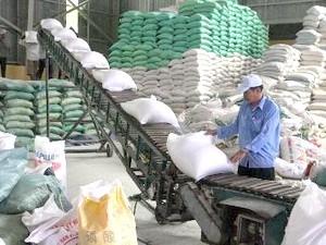 700 tỷ đồng xây kho lương thực hiện đại ảnh 1