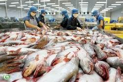 Mức phí thẩm định kinh doanh thương mại cá tra ảnh 1
