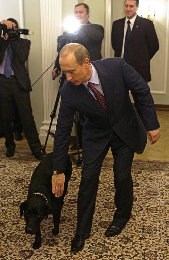 Những món quà 4 chân của Putin ảnh 1
