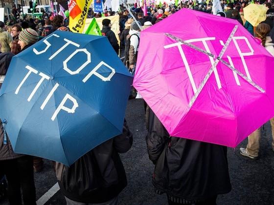 TTIP có thể tiếp tay cho hành vi trốn thuế ảnh 1
